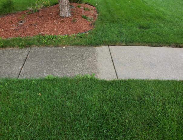 Concrete Cleaned and Sealed